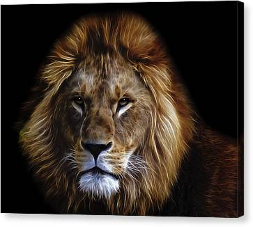 King Of Africa Canvas Print by Daniel Hagerman