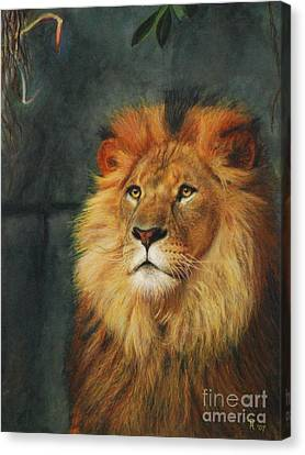 King Of Taronga - Watercolor Canvas Print by GD Rankin