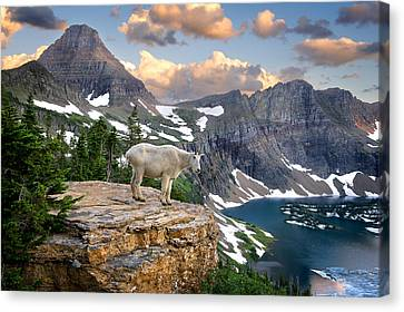 King Of The Mountains Canvas Print by Bernard Chen
