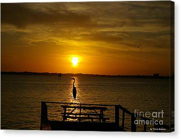 Canvas Print featuring the photograph King Of The Pier by Tannis  Baldwin