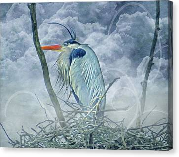 King Of The Sky Canvas Print