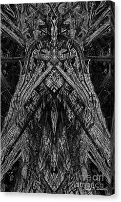 King Of The Wood Canvas Print by David Gordon