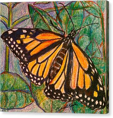 King On A Leaf Canvas Print by Kendall Kessler