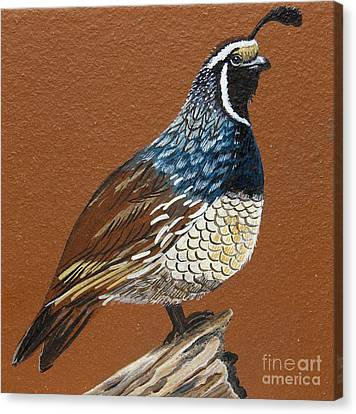 Canvas Print featuring the painting King Quail by Jennifer Lake