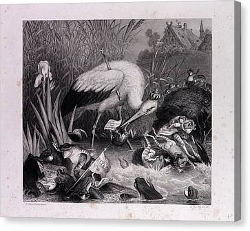 King Stork And The Frogs Canvas Print