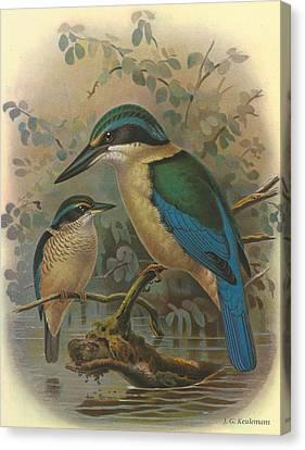 Kingfisher Canvas Print by Anton Oreshkin