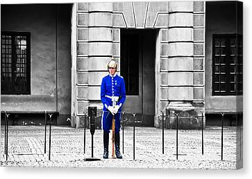 King's Guard No.2 Canvas Print by Damion Lawrence