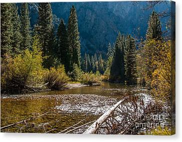 Kings River 1-7810 Canvas Print
