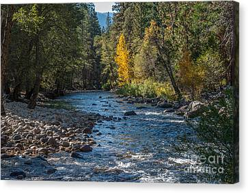 Kings River 1-7813 Canvas Print