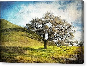 Kiss The Earth Canvas Print by Ellen Cotton