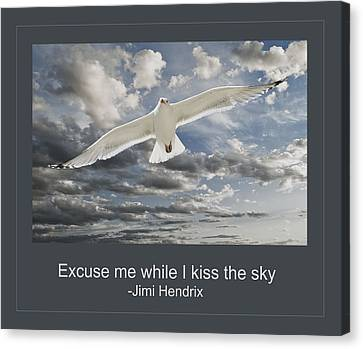 Flying Seagull Canvas Print - Kiss The Sky by Rick Mosher