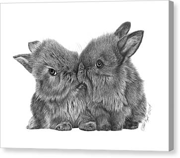 Kissing Bunnies - 035 Canvas Print by Abbey Noelle