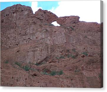 Canvas Print featuring the photograph Kissing Camels by Sheila Byers
