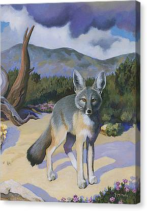 Kit Fox Canvas Print