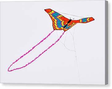 Kite With Pink Tail Canvas Print by Michael Bruce