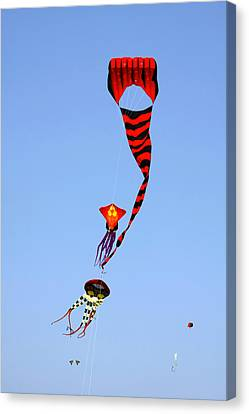 Kites Over Baja California Canvas Print by Christine Till