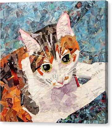 Kitkat Canvas Print by Paula Dickerhoff