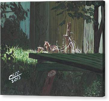 Kits In The Sun Canvas Print by Cliff Wilson