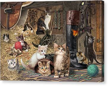 Shed Canvas Print - Kitten Capers by Steve Read