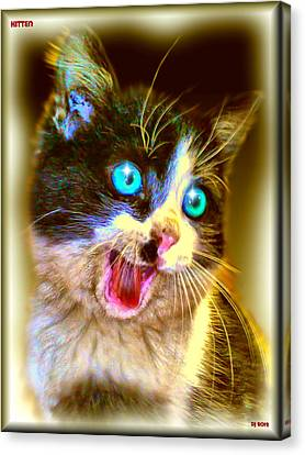 Canvas Print featuring the painting Kitten by Daniel Janda