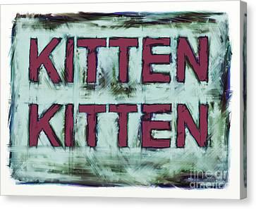 Kitten Kitten 2 Canvas Print by Keith Mills