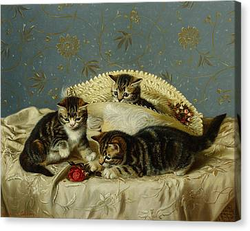 Kittens Up To Mischief Canvas Print by HH Couldery