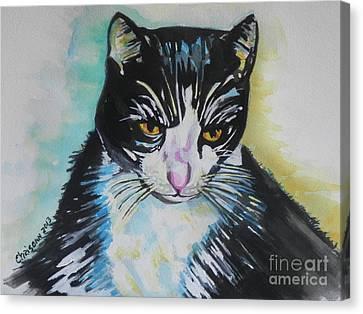 Kitty ..all Grown Up Canvas Print by Chrisann Ellis