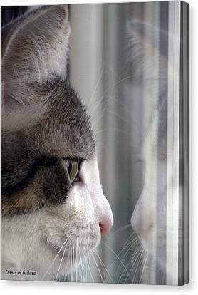 Kitty Cat Reflection Vert Canvas Print by Lorrie Bedore