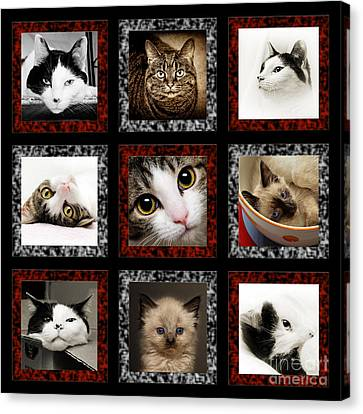 Kitty Cat Tic Tac Toe Canvas Print