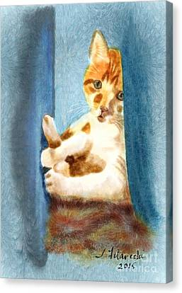 Kitty In A Corner Canvas Print by Judy Filarecki