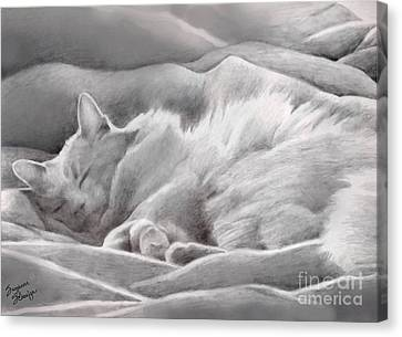 Kitty In The Covers Canvas Print