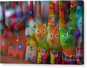 Canvas Print featuring the photograph Kitty Kitty  by John S