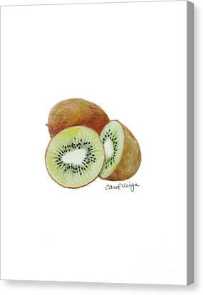 Kiwi Canvas Print by Carol Veiga