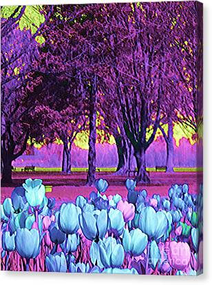 Kiwi Sky With Tulips Canvas Print by Ann Johndro-Collins