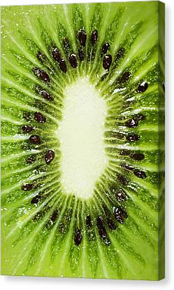 Kiwi Slice Canvas Print by Chris Knorr