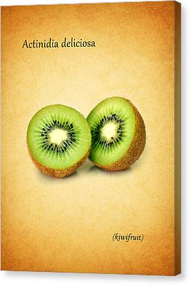 Kiwifruit Canvas Print by Mark Rogan