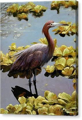 Knee Deep Canvas Print