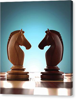 Knight Chess Pieces Canvas Print