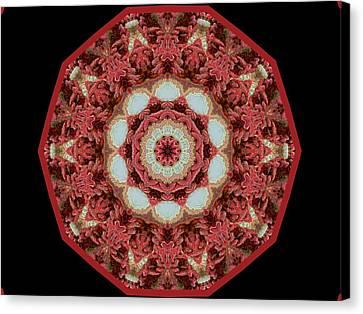 Canvas Print featuring the digital art Knotty Twists Kaleidoscope by Aliceann Carlton