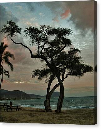 Knurled Tree And Resting Rider Canvas Print