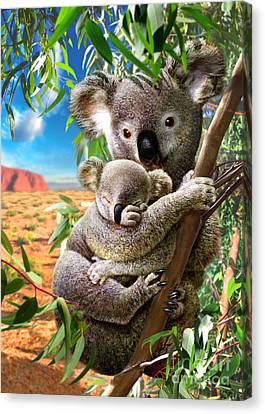 Koala And Cub Canvas Print by Adrian Chesterman