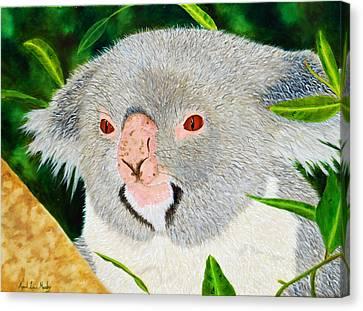 Koala Canvas Print by April Moseley