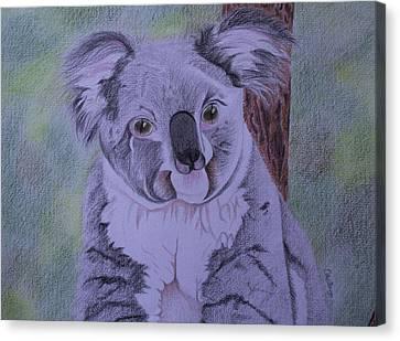 Koala Canvas Print - Koala by Carol De Bruyn