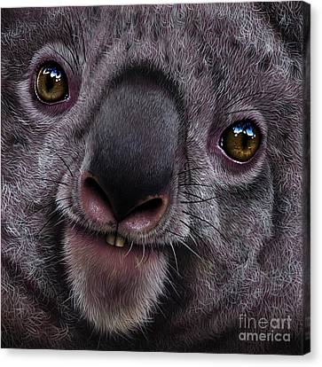 Koala Canvas Print by Jurek Zamoyski