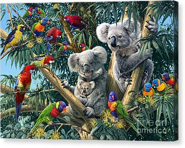 Eucalyptus Canvas Print - Koala Outback by Steve Read