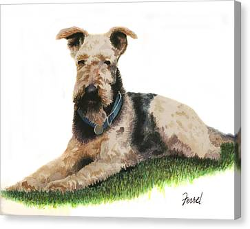 Canvas Print featuring the painting Kobe Airedale Terrier by Ferrel Cordle