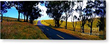 Kohala Mountain Road  Big Island Hawaii  Canvas Print