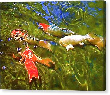 Canvas Print featuring the photograph Koi 1 by Pamela Cooper