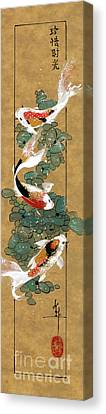 Koi And River Stones Canvas Print