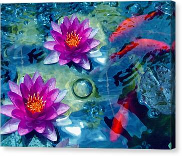 Koi And The Water Lilies Canvas Print